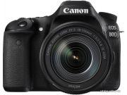 Цифровая фотокамера Canon EOS 250D EF-S 18-55 IS STM kit (Silver)