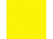 Фон бумажный FST 2,72x11 м 1007 YELLOW желтый