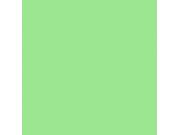 Фон бумажный FST 2,72x11 м 1026 SPRING GREEN весенняя зелень