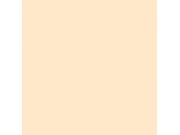 Фон бумажный FST 2,72x11 м 1028 IVORY